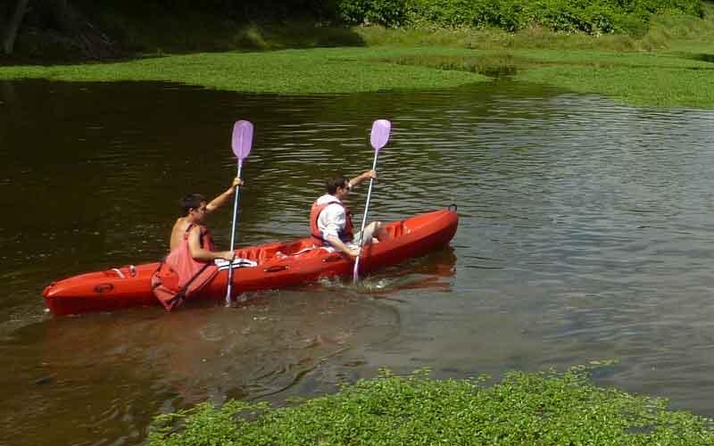 Location de canoë sur la Loire