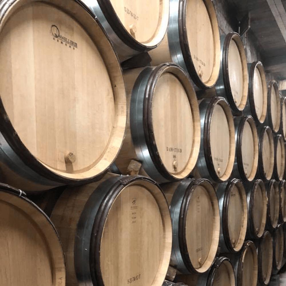 Weinproben im Burgund